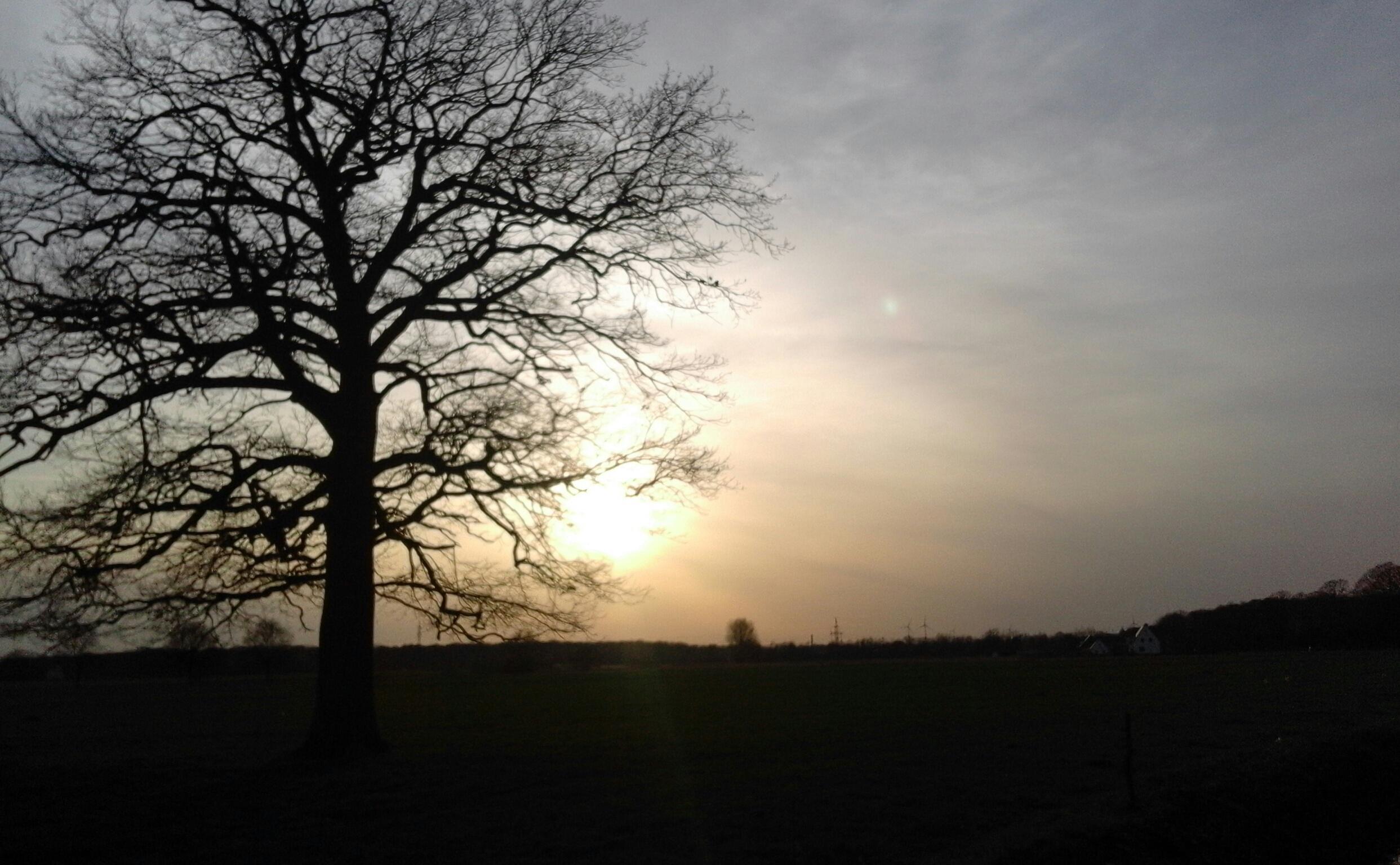 Unbearbeitet: Sonnenuntergang auf einem Feld bei Wiedenbrück.